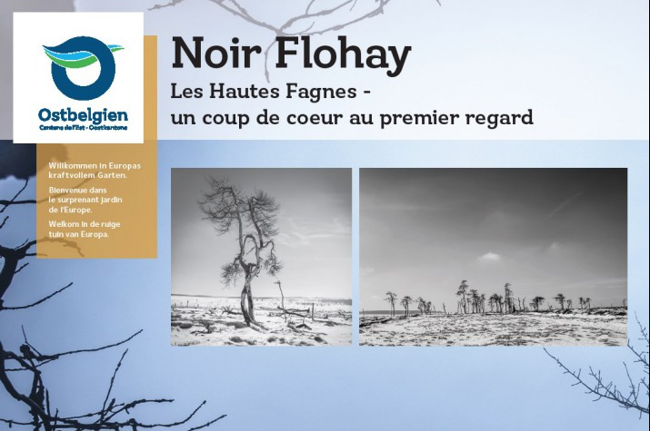 Screenshot noir flohay